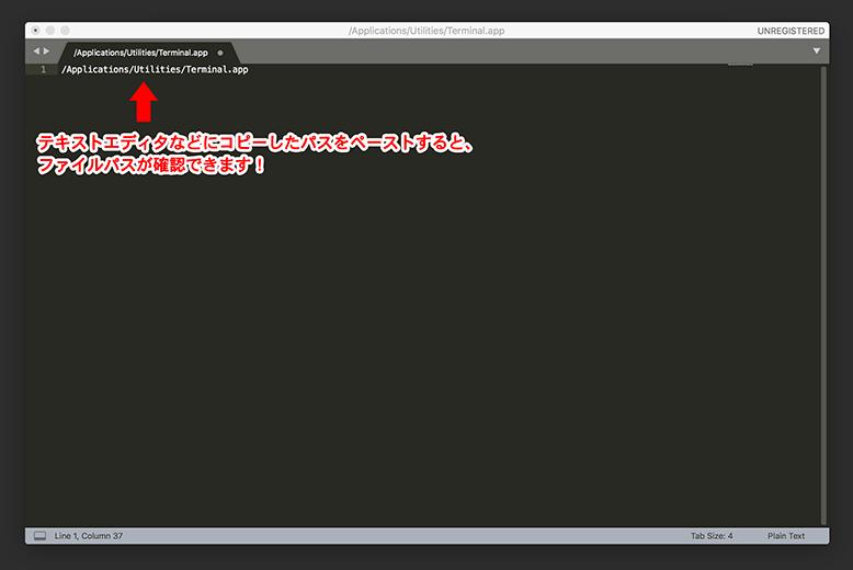 ファイルパスの確認・コピーのやり方2